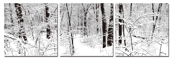 Baxton Studio Winter Woods Mounted Photography Print Triptych affordable modern furniture in Chicago, Baxton Studio Winter Woods Mounted Photography Print Triptych,  Decorating  Chicago