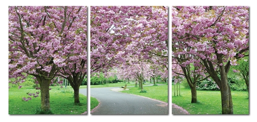 Baxton Studio Spring in Bloom Mounted Photography Print Triptych affordable modern furniture in Chicago, Baxton Studio Spring in Bloom Mounted Photography Print Triptych,  Decorating  Chicago
