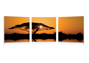 Baxton Studio Savannah Sunset Mounted Photography Print Triptych affordable modern furniture in Chicago, Baxton Studio Savannah Sunset Mounted Photography Print Triptych,  Decorating  Chicago